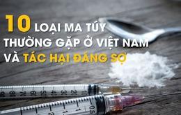 [Infographic] 10 loại ma túy thường gặp ở Việt Nam và tác hại đáng sợ