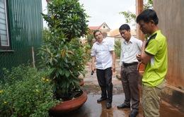 Đắk Lắk: Còn nhiều khó khăn trong công tác phòng chống sốt xuất huyết