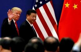 Mỹ - Trung nối lại đàm phán thương mại trước hội nghị G20 ở Nhật Bản