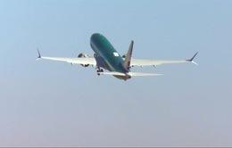 Hàng không toàn cầu cắt giảm dự báo về lợi nhuận