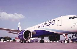 IndiGo sẽ mở đường bay thẳng Kolkata - Hà Nội