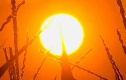 Cảnh báo nhiệt độ toàn cầu tăng thêm 3 độ C vào cuối thế kỷ này