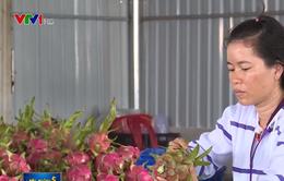 Xuất khẩu nông sản Việt sang Trung Quốc gặp khó trước quy định mới