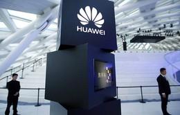 Doanh số điện thoại của Huawei ở Tây Âu tăng trong vài ngày qua