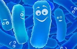 Giảm thiểu việc sử dụng kháng sinh bằng công nghệ bào tử lợi khuẩn