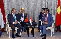 Việt Nam - Indonesia: Thúc đẩy hơn nữa hợp tác kinh tế, thương mại, đầu tư