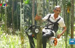 Nông dân Ấn Độ tận dụng xe máy cũ sáng chế máy leo cây