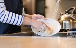 Phát hiện virus có thể tiêu diệt vi khuẩn trong giẻ rửa bát