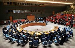 HĐBA Liên Hợp Quốc kêu gọi giảm căng thẳng vùng Vịnh