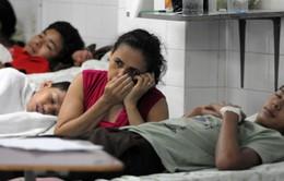 Số người thiệt mạng do sốt xuất huyết tại Honduras tiếp tục tăng