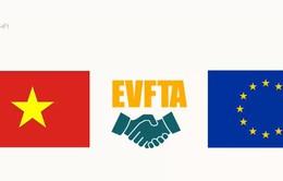 Lộ trình của Hiệp định Thương mại tự do Việt Nam - EU (EVFTA)