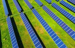 Nhà sản xuất bánh kẹo số 1 Mỹ chuyển sang dùng năng lượng mặt trời