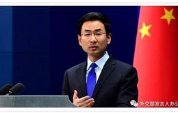 Mỹ - Trung hy vọng Hội nghị thượng đỉnh hữu ích và thành công