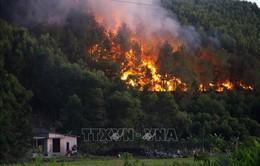 Liên tiếp xảy ra cháy rừng tại Thừa Thiên - Huế