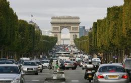 Paris cấm ô tô cũ lưu thông trong đợt nắng nóng
