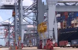 Thực hư chuyện cụm cảng Cái Mép - Thị Vải chỉ đạt 50% công suất