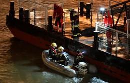Việt Nam gửi điện thăm hỏi vụ chìm tàu ở Hungary