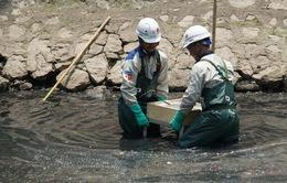 Sử dụng chế phẩm xử lý nước sông, hồ Hà Nội