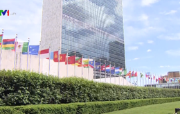 Đóng góp của Việt Nam trong Hội đồng Bảo an Liên Hợp Quốc