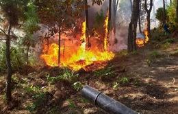6 điểm đang cháy lớn tại Hương Sơn, Hà Tĩnh
