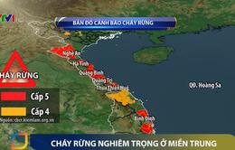 Nhiều tỉnh miền Trung đối mặt với cháy rừng nghiêm trọng