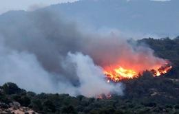 Cháy rừng do nắng nóng tại Pháp