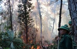 Hà Tĩnh trắng đêm dập lửa cứu rừng