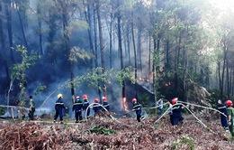 Thừa Thiên - Huế: Duy trì các lực lượng ngăn chặn cháy rừng bùng phát