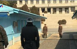 Khu phi quân sự DMZ trở thành biểu tượng của hòa giải