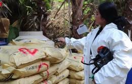 Mexico phát hiện 3 cơ sở điều chế ma túy lớn