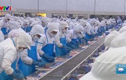 Nhật Bản dẫn đầu nhập khẩu thủy sản Việt Nam 4 tháng đầu năm