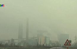 Cuộc chiến chống ô nhiễm không khí ở Tuzla, Bosnia