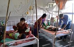 Brazil cảnh báo số người thiệt mạng do sốt xuất huyết gia tăng