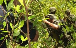 Phát hiện xưởng sản xuất ma túy của trùm ma túy El Chapo