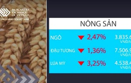 Thị trường hàng hóa ngày 5/6 đồng loạt giảm điểm