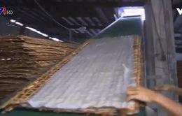 Ghé thăm làng nghề sản xuất hủ tiếu Mỹ Tho