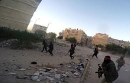 IS thừa nhận tiến hành vụ tấn công ở Sinai, Ai Cập