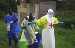 Congo báo động với hơn 1.000 người tử vong vì dịch Ebola