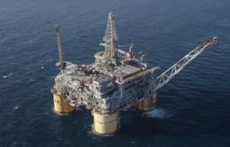 OPEC giảm dự báo nhu cầu về dầu