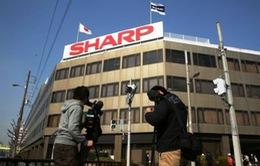 Sharp có thể chuyển sản xuất từ Trung Quốc sang nước khác