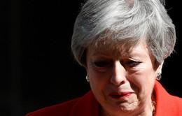 Đang có 11 ứng viên chạy đua vào chức Thủ tướng thay bà Theresa May