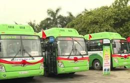 Hà Nội sắp có thêm 4 tuyến bus sử dụng nhiên liệu sạch CNG