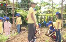 Xây dựng kĩ năng sống cho trẻ vào dịp hè
