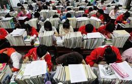 """Áp lực thi cử khiến sỹ tử Trung Quốc lạm dụng """"thuốc thông minh"""""""