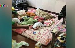 Triệt phá đường dây mua bán trẻ sơ sinh xuyên quốc gia: Công an giải cứu 4 bé