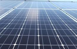 Vận hành thêm 57 nhà máy điện mặt trời, gió