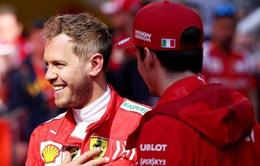 Sebastian Vettel giành pole ở GP Canada