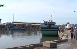 Nhiều tàu dịch vụ nằm bờ - Hậu cần nghề cá gặp khó