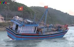Ngư dân Quảng Ngãi gặp khó khăn vì cửa biển bị bồi lấp