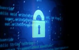 Giới chức Mỹ cân nhắc về lệnh cấm mã hóa đầu cuối